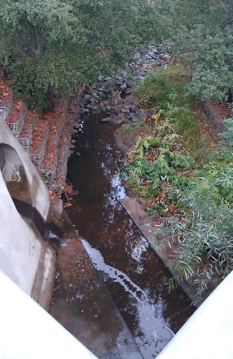 Adobe Creek:アドビ川2